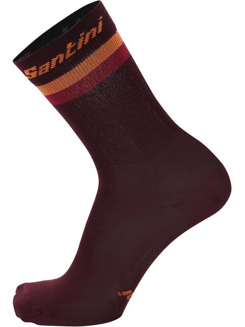 Santini Terra High Socks Men print
